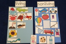 Latticed Learning: Living Things