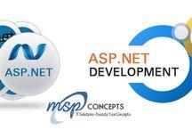 Asp Net Development Company