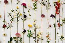 Wild Flower Wedding