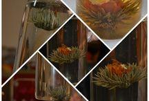 Spectacle d'une Fleur de thé / Le joli spectacle d'une éclosion dune fleur de thé !! http://www.thes-a-dom.com  #fleurdethé #fleur de thé #thesadom