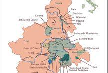 Piedmont, Italy / Food, Wine & Travel
