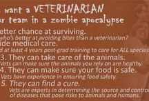 Just for Fun / We all know that animals can be a lot of fun. So can veterinarians and the rest of the veterinary care team.