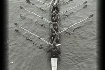 Rowing Rowers Rivers / by Anna J Harris