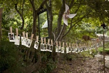 Wedding Ideas / by Sandra Trevino