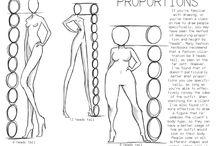 proportion & details
