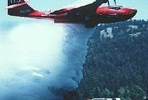 Waterbomber planes