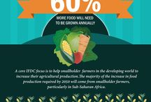 IFDC Infographics / There are many challenges to creating sustained food security across the globe. The purpose of these infographics is to simplify some of these complicated issues and offer IFDC's solutions to them in an engaging and informative way.