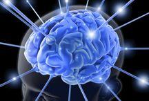 Brain and Body