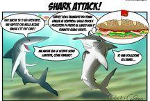 Vignette / Qui bi proponiamo le nostre vignette, pubblicate sulle riviste specializzate Pesca In e Pesca da Terra