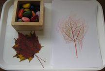 activities: autumn