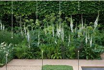 Rostliny-sortiment
