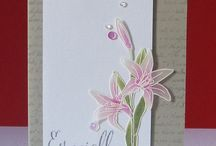 Clearly Besotted / Handmade cards by Yiming Hao using Clearly Besotted Stamps and dies.