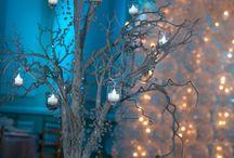Winter Wonderland ideas