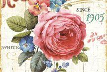 Láminas - Floral