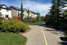 My Community - Cougar Ridge