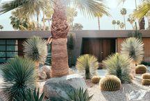 Dream House / Garden