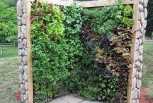 Gardentrend