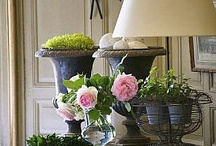 country shabby and chic / by Debra Sweaney