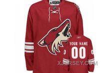 NHL Customized