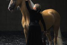 horse breeds i love
