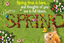 Spring Ecards / Green grass| Afternoon showers |Warm sunshine |Preety flowers! Happy Springtime!! Enjoy and cherish the coolness of spring with Free Ecards. Download 123greetings App: Android: Tiny URL: http://tinyurl.com/123gandpint   IOS: Tiny URL: http://tinyurl.com/123giospint  	   / by 123Greetings Ecards