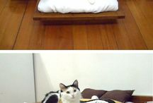 Cute cat beds ^_^