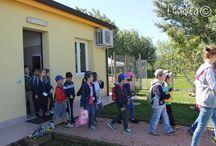 SCHOOL VISITS / STUDENTI IN VISITA / Alcune scuole locali visitano il rifugio / Several elementary schools visit the shelter.