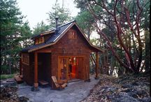 tiny house and cabin