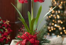 fiori e ornamenti