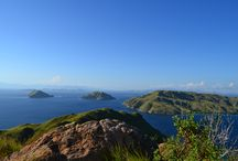 lets visit komodo to explore the beautful scinary and visit the giant of komodo varanus