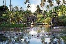 Luxury Honeymoons in Thailand / Find beach bliss and plenty of adventure on holiday in breathtaking Bangkok, Phuket and Koh Samui