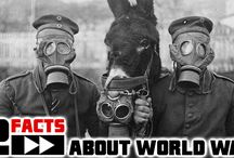 History - 12facts.com / Weird but true facts in topic History.