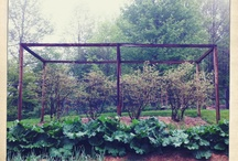 Garden Spaces / Garden features to inspire, sheds and greenhouses made from recycled materials and grow your own veg. / by Gloria Nicol