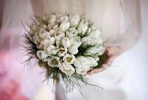 wedding / photos taken by Machi di Pace and Claudio Morelli