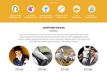 Animals Pets Themes / We have creative modern animals pets themes, premium animal pet website templates are elegant, minimal design.The best templates and designs for your store: animals, dogs, cats, reptiles, poultry, pet shop, veterinary, farm.