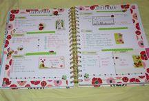 Mon agenda / My planner (Ban.do) / Organisation et décoration de mon agenda / My planner setup and decorated pages