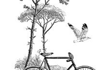 Bicikli rajz