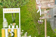 Rustic baby girl party