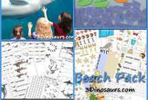 ocean learning activities