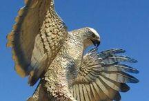 I love Birds of Prey