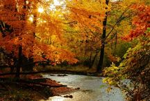 Nothing Like Fall / Edita Kaye pins her favorite and breathtakingly beautiful photos of Fall time