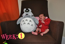 Olivia's Weekly & Monthly Photos / Every Wednesday for one year we took a photo of our daughter in her nursery. The plush next to her is Totoro from one of my favorite movies My Neighbor Totoro. Every 2nd of the month, we take a monthly photo of our daughter in her nursery next to her Totoro plush.