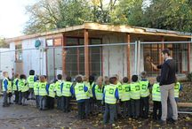 Three Little Pigs construction project! / We joined Sacred Heart primary with their three little pigs construction project and they learned about sustainable buildings