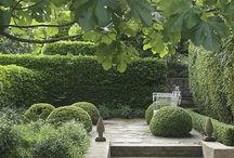 Tuinen / Groene tuinen