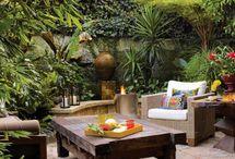 Exotic garden ideas