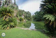 VISITAR | Jardim Botânico Tropical