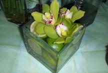 Centerpieces: Cymbidium Orchid / #weddings #indianwedding #indianweddings #sjsevents #sonaljshah #sonaljshahevents www.sjsevents.com #SJSevents  #wedding #weddings  #indianwedding #indianweddings #bride #brides  #indianbride #indianbrides #bridal #bridals #indianbridal #indianbridal #accessorie #accessories #centerpiece #centerpieces #orchidcenterpiece #orchidcenterpieces #cymbidiyumcenterpiece #cymbidiyumcenterpieces #weddingcenterpiece #weddingcenterpieces #cymbidiumorchid #cymbidiumorchids #orchid #orchids