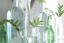 Bottles and Jars / by Lisa Dittmander