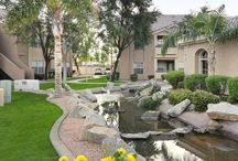 Phoenix Apartment Homes / Apartments available to rent.