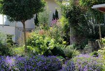 Vorgarten/front yard / Ideen für meinen Vorgarten